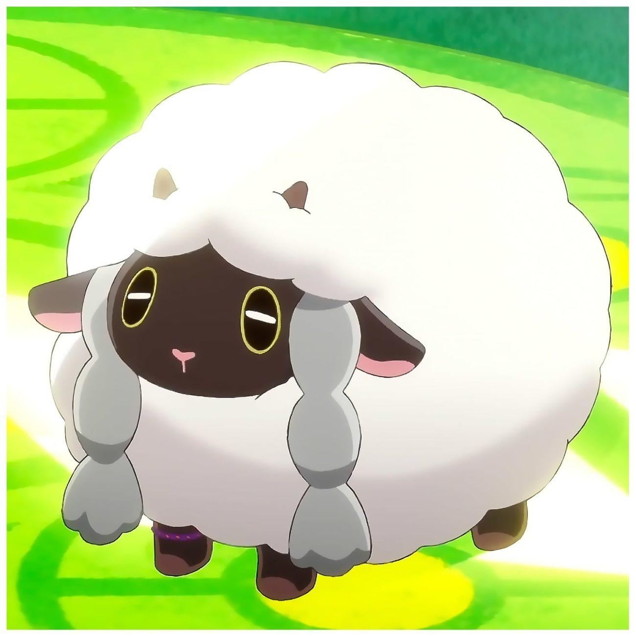 Profil - Moumouton